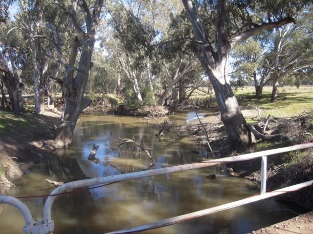 Borambil on the river