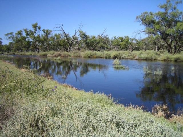 Mungadal river